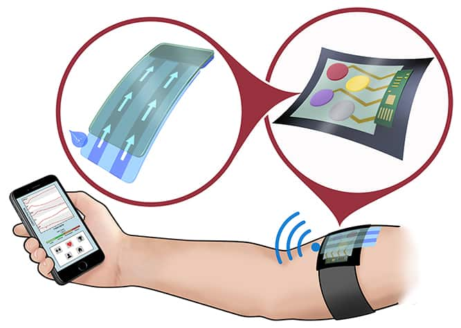 Sweat Sensor Measures Variety of Biochemicals to Help Monitor Exercise, Disease