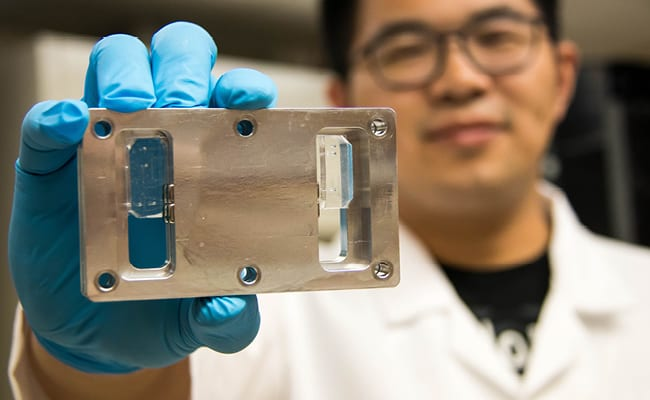 Magnetic Beads Strip Blood Samples to Allow Circulating Tumor Cell Isolation