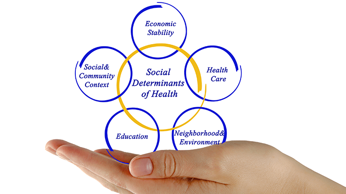 Addressing social determinants of health with data interoperability