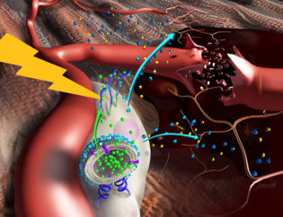 Nanostimulators Activate Damaged Tissue to Heal Itself